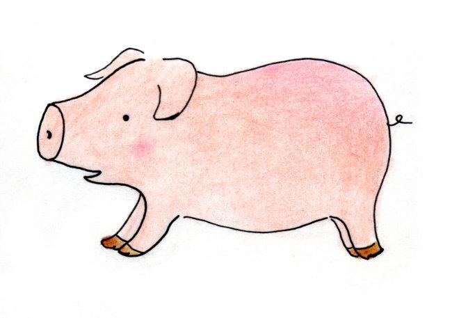 奔跑中的可爱小猪插画下载