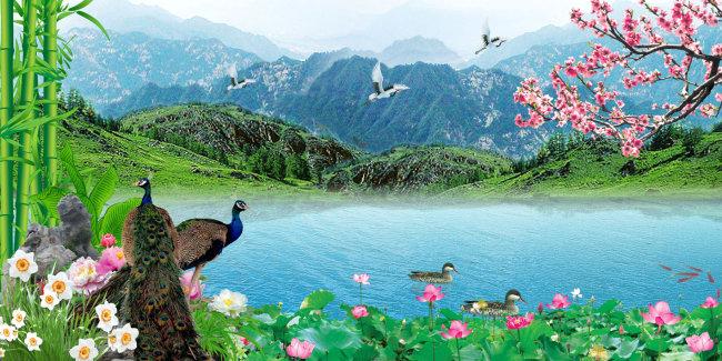 竹林荷花风景美女图片