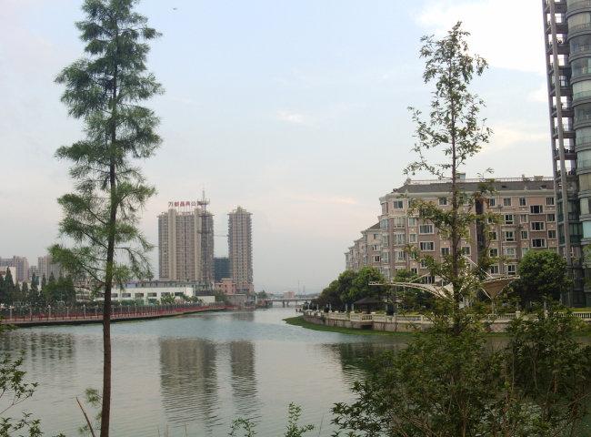 南江水上豪华别墅群江边护河树