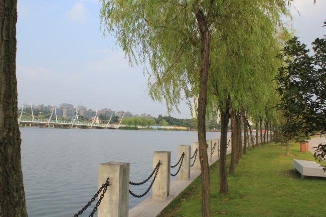 水 河流 湖边 蓝天白云 建筑 房子 自然风景   鲜花类  树叶  绿色