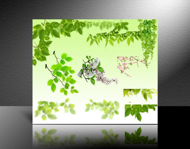 绿色植物素材 绿叶-插画|元素|卡通-其他