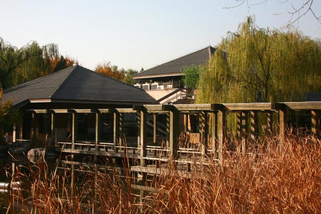 植物园秋景