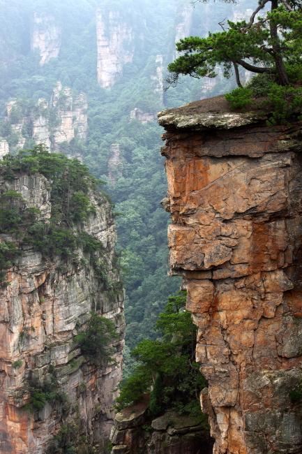 壁纸 大峡谷 风景 433_650 竖版 竖屏 手机