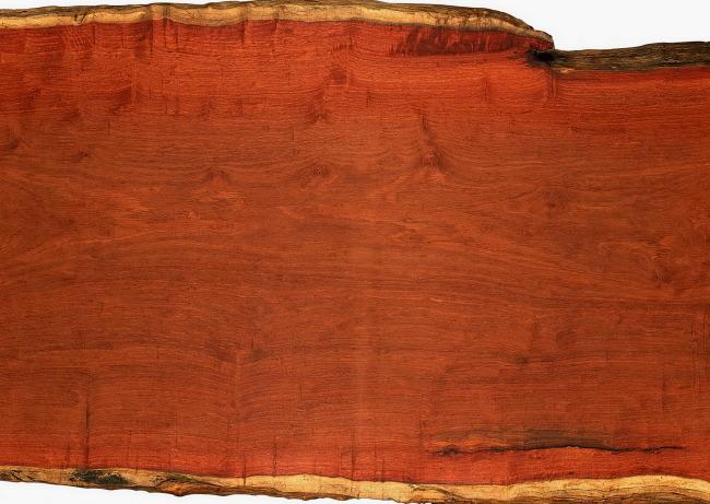 木纹 底纹 树纹 材质 树纹材质