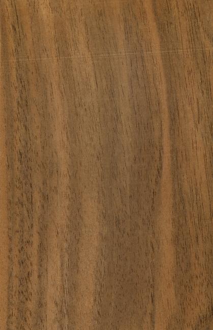 >高清木纹材质贴图