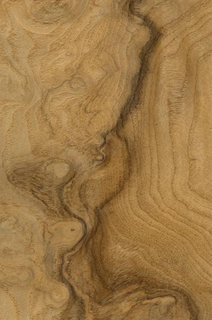 浅色木板材质贴图; 高清木纹材质贴图;; 浅色木板 木材 材质贴图下载