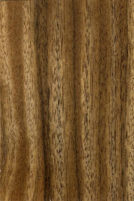 纹理 板纹 木纹纹理 木纹背景