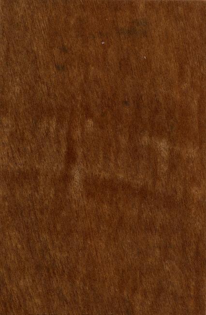 木纹材质 木头 材质纹理 条纹 肌理 纹理 板纹 木纹纹理 木纹背景