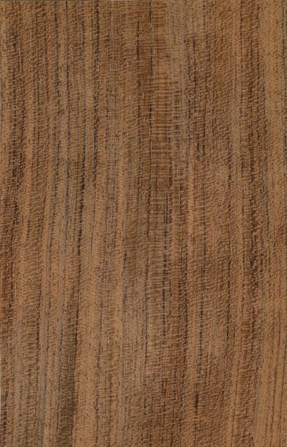 材质 板纹 木纹 地板 条纹 木材 纹理 木板 材质纹理 木料 贴图 木纹