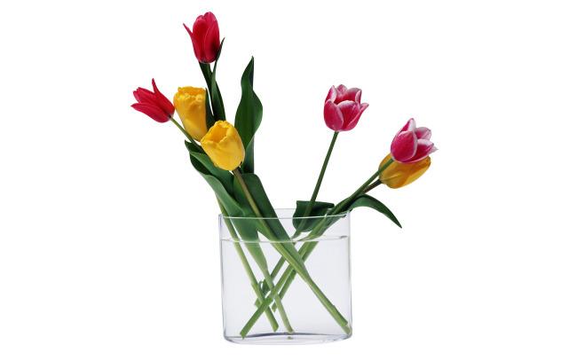 花束包扎图解》鲜花花束》怎么包扎花束