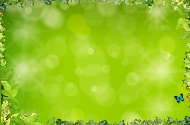 797 兆  绿色 叶子 树叶 相片框 图片框 照片框 花边 贴纸相框