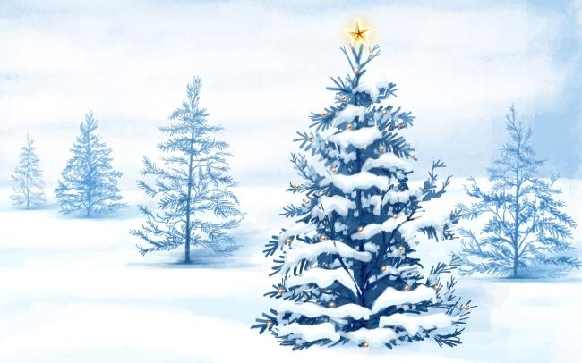 圣诞圣诞节 圣诞树 彩灯灯光星星五角星彩球圣诞球 树叶树枝树光 雪地