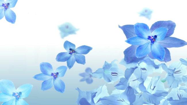 淡蓝色唯美梦幻背景