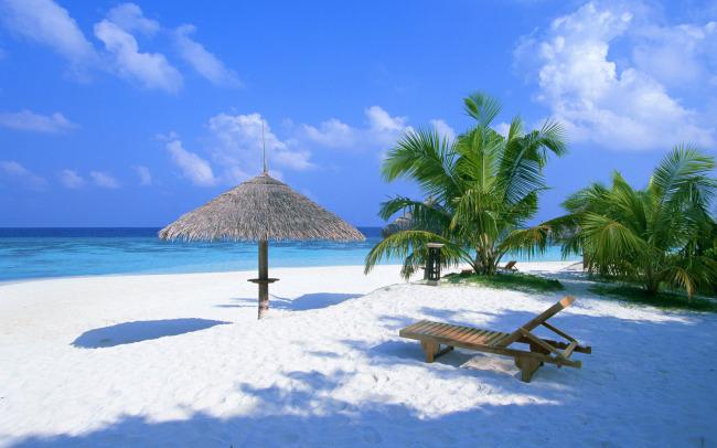 海滩椰子树沙滩主题桌面壁纸高清晰大图片素材