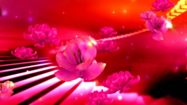 玫瑰花舞台led背景视频素材