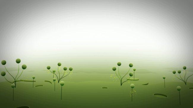 小树小草简笔画大全内容小树小草简笔画大全图片