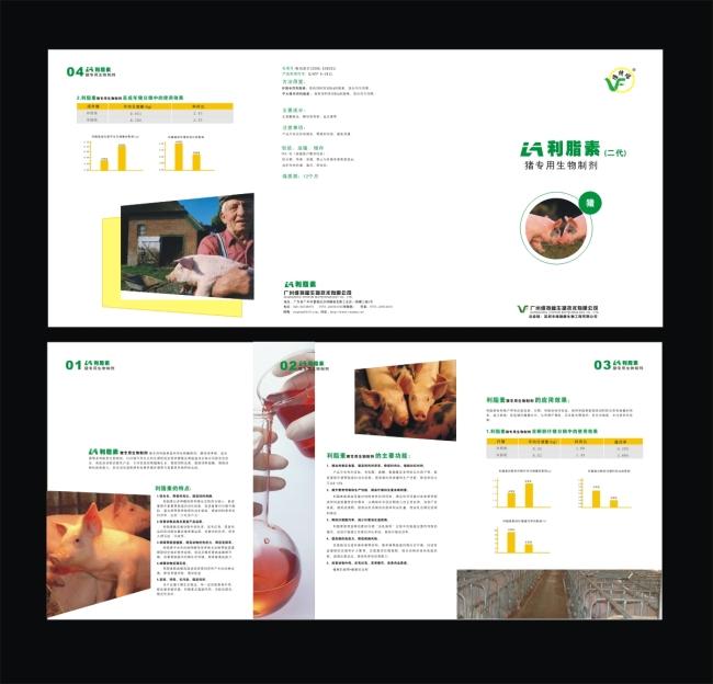 产品折页设计-折页设计|模板-海报设计|促销|宣传广告
