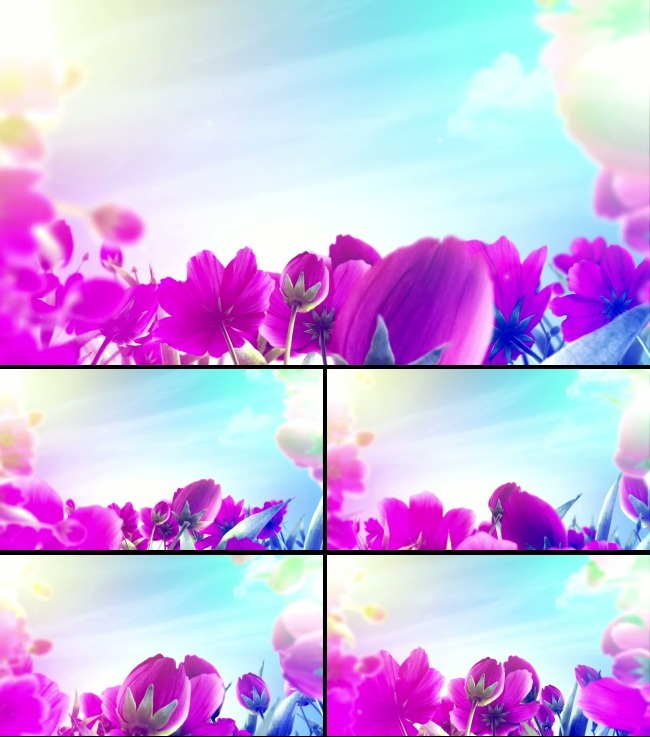 关键词:富贵 中国梦 和谐中国 喜庆 婚庆 紫色花朵 郁金香 LED视频背景 晚会 元旦 新年 2014跨年 婚礼庆典 歌唱祖国 爱我中华 歌曲 舞蹈 儿童 希望 儿歌 民歌 大联欢 蓝天白云 说明:歌唱祖国爱我中华视频背景