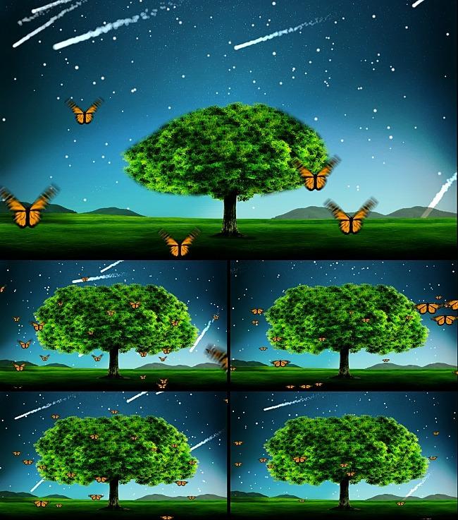 小树慢慢长成大树全过程