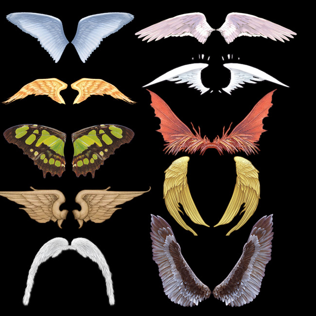 素材 翅膀/翅膀素材