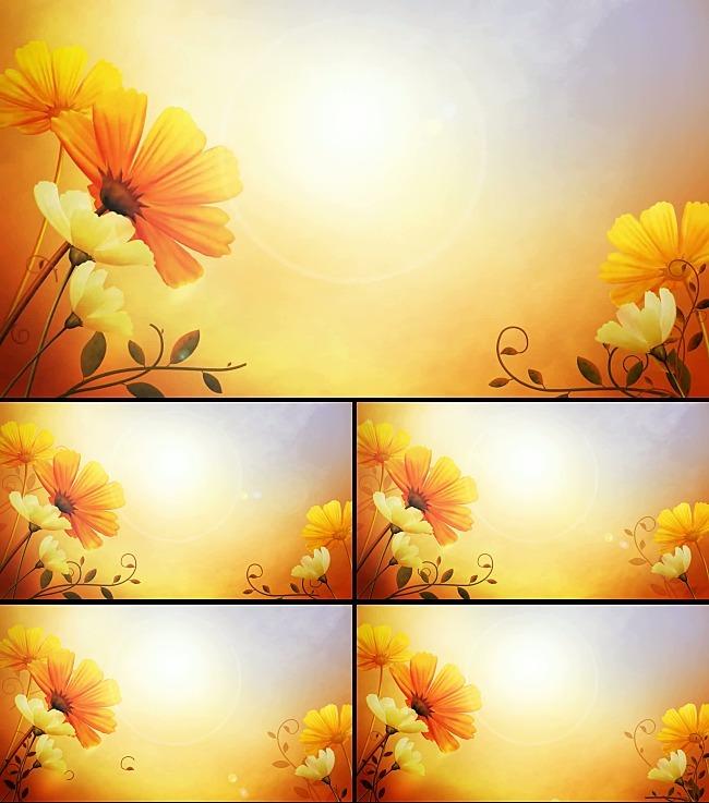 黄色小花生长动画背景