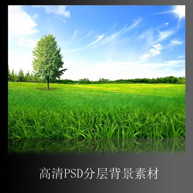 美丽自然风景树林蓝天白云草地背景墙图片图片