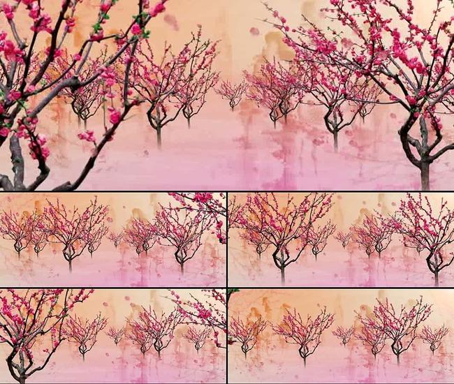 一朵桃花的画法步骤