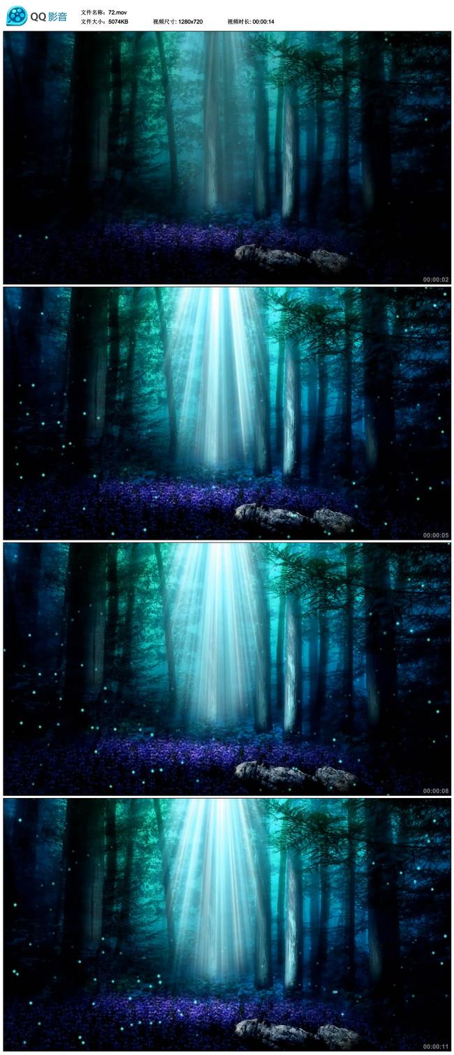 唯美梦幻森林树木光线背景动态视频