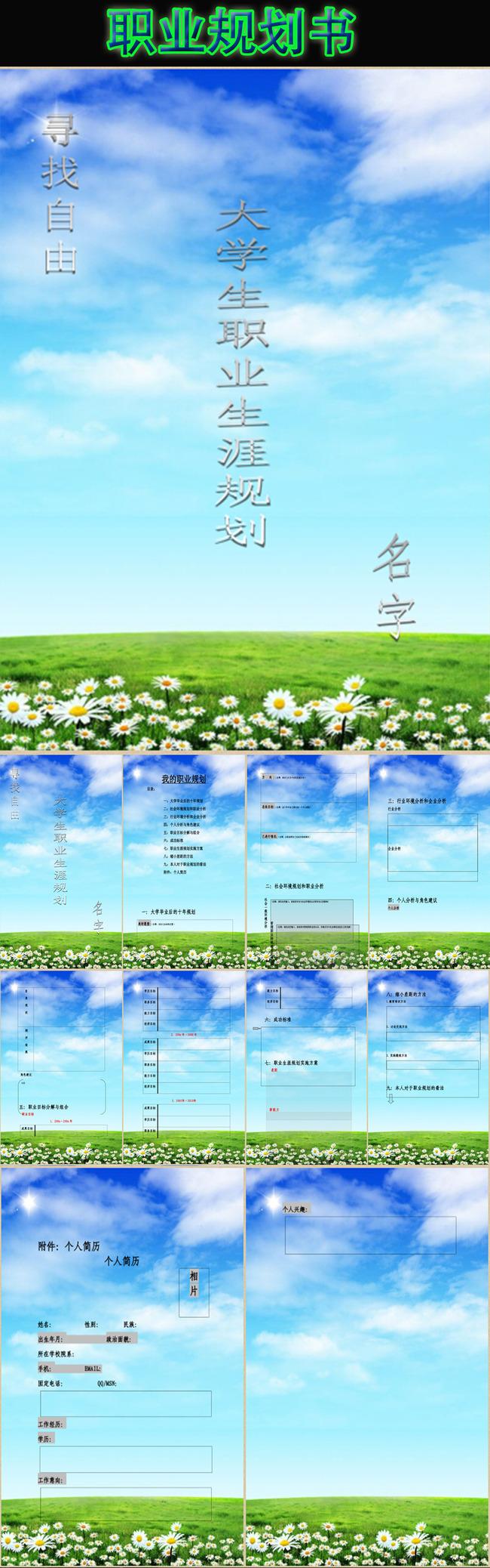 职业规划书-应用文书-word模板